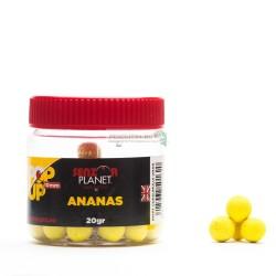 POP-UP ANANAS 10mm 20g