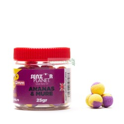 POP-UP ANANAS & MURE 12mm 25g