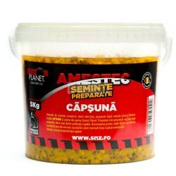 AMESTEC SEMINTE CAPSUNA 5kg